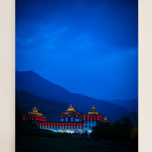 Bhutan King's Palace (portrait)