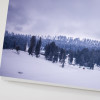 snow-covered-ground-trees-kashmir-canvas-framed-pic-buy-online-india-simplypush-photography-store-pushpendra-left