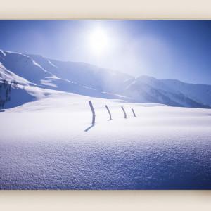 Kashmir's Gulmarg Snowfall