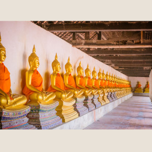 Buddha Temple Thailand